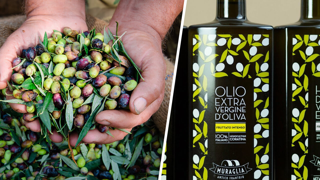 Read more about the article Frantoio Muraglia ne dă răspunsurile la cele mai frecvente întrebări legate de uleiurile de măsline!